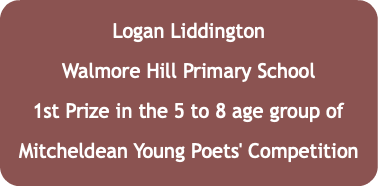 Logan Liddington Walmore Hill Primary School 1st Prize in the 5 to 8 age group of Mitcheldean Young Poets' Competition
