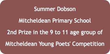 Summer Dobson Mitcheldean Primary School 2nd Prize in the 9 to 11 age group of Mitcheldean Young Poets' Competition