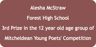 Alesha McStraw Forest High School 3rd Prize in the 12 year old age group of Mitcheldean Young Poets' Competition